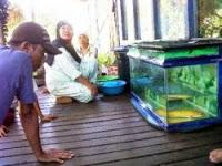 7 Makhluk Aneh yang Pernah Ditemukan di Indonesia