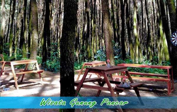 Wisata gunung Pancar Bogor
